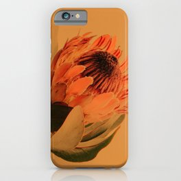 Protea - golden iPhone Case