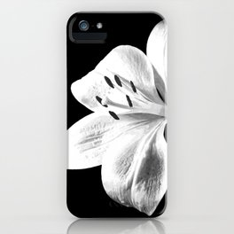 White Lily Black Background iPhone Case