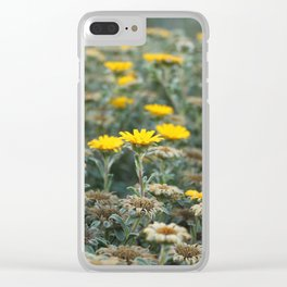 Scars Of Humanity Clear iPhone Case