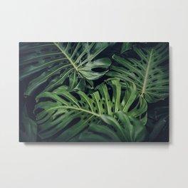 Tropical Monstera Leaves Metal Print