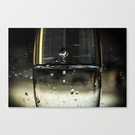 Under water Canvas Print