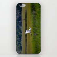 grace iPhone & iPod Skins featuring grace by Lisa Carpenter