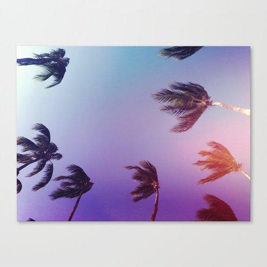 Under tall Palm trees Canvas Print