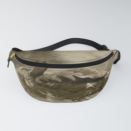 Whistling Duck Valencia Tint Fanny Pack
