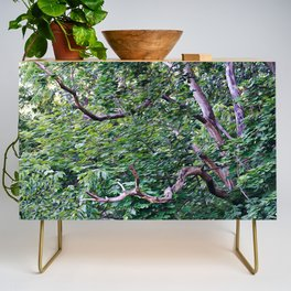 An Old Branch Credenza