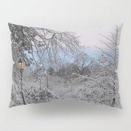 Prospect Park - Winter 2016 Pillow Sham