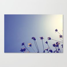 Marvelous Things Canvas Print