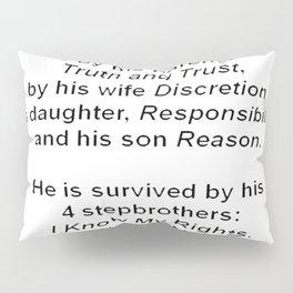 The Death of Common Sense Pillow Sham