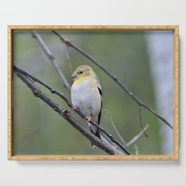 yellow finch Serving Tray