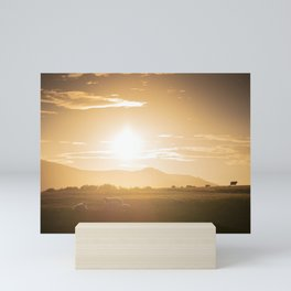 Sheep grazing in Lake District at sunset in England Mini Art Print