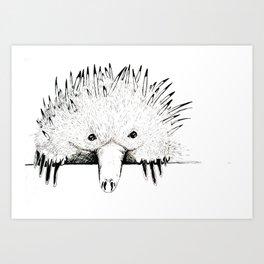 Nudge in Echidna Art Print