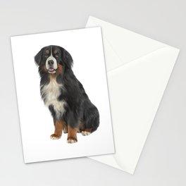 Bernese Mountain Dog. Drawing funny dog Stationery Cards