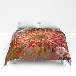 Pincushion Protea Comforters