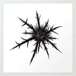 Dry Thistle With Sharp Thorns Botanical Art Art Print