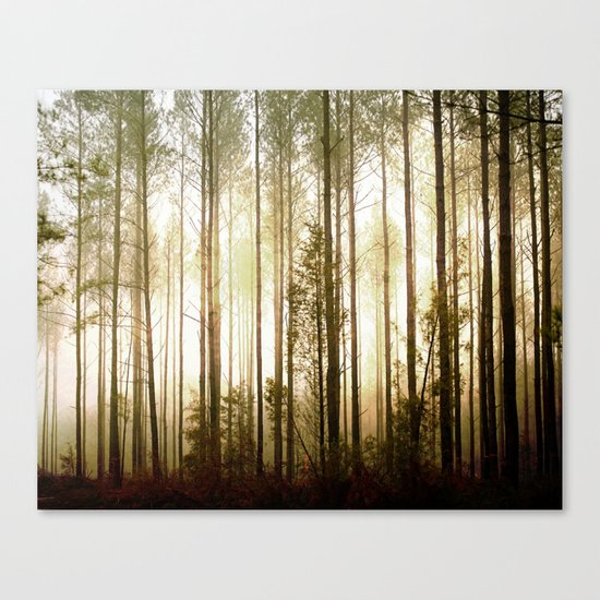 Glowing Forest Canvas Print