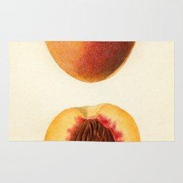 Vintage Illustration of a Sliced Peach Rug