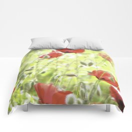 Poppies in the bright sunshine Comforters