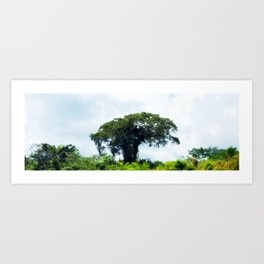 Giant tree in amazon skyline Art Print
