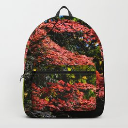 autumn in the light Backpack