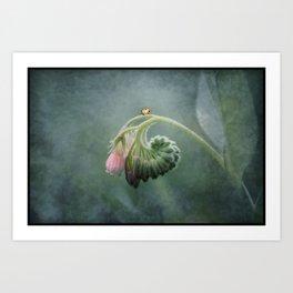 Do Ladybirds sleep at night? Art Print