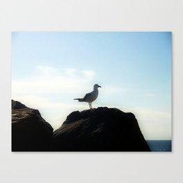 Bird's eye View Canvas Print