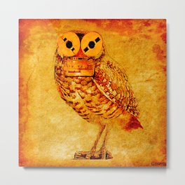The owl recorder Metal Print