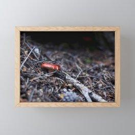 Red Mushroom Framed Mini Art Print