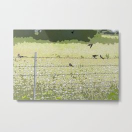 Birds on a Fence Metal Print