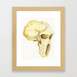 Africalopithecus Framed Art Print