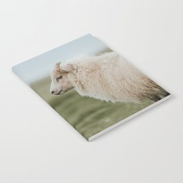 Sheeply in Love - Animal Photography from Iceland Notebook