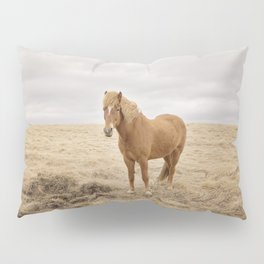 Solitary Horse in Color Pillow Sham