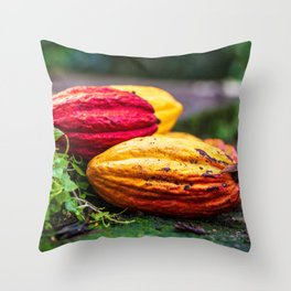 Cocoa Colours Throw Pillow