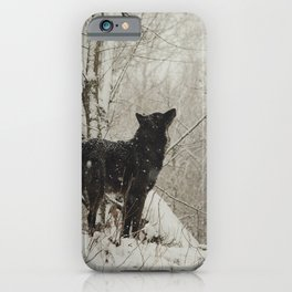 Watching the Snow iPhone Case