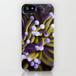 Coral Euphylia Golden Torch iPhone Case