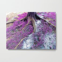 Enchanted Forest I Metal Print