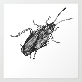 cucaracha #3 Art Print