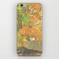 Autumn Gate iPhone & iPod Skin