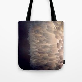 Soft light through the feathers Tote Bag