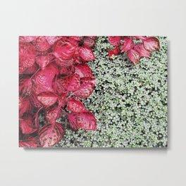 Pink Leaves on Green Carpet Metal Print