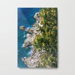 Augustus Gardens: Capri, Italy Metal Print