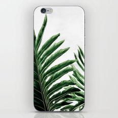 Leaves 1 iPhone & iPod Skin