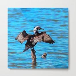 Cormorant Wings on Blue Water Metal Print