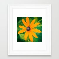 shining Framed Art Prints featuring Shining by DejaReve