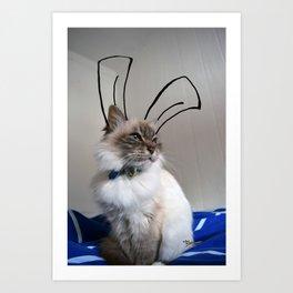 Easter cat Art Print
