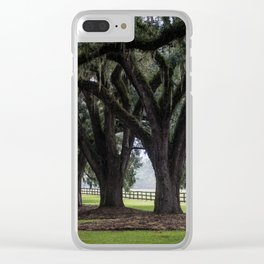 Tree Arch Drive Clear iPhone Case