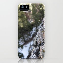 Crystalline Moss iPhone Case