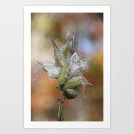 fall joy Art Print