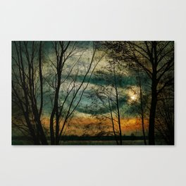Nature lake Canvas Print