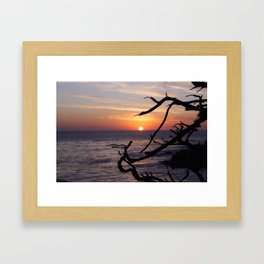 Sunset by the Lonely Cypress. Framed Art Print