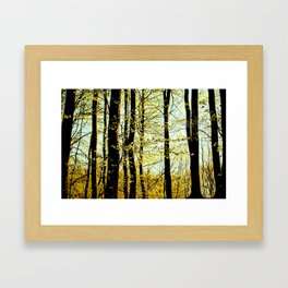 Green forest Framed Art Print